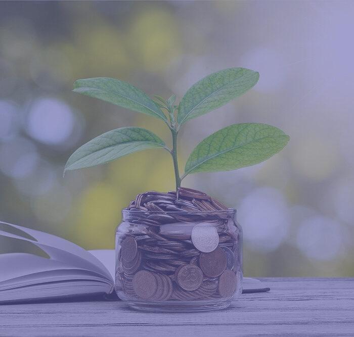 educação-financeira-v2